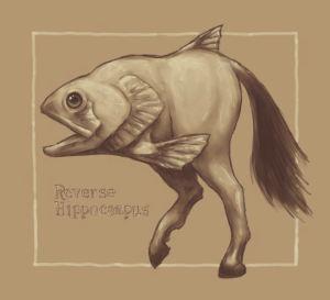 Reverse Hippocampi